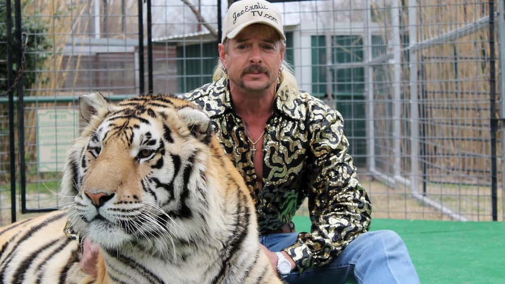 Tiger king LAS MEJORES SERIES DEL 2020