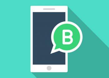 Whatsapp-Business-lo nuevo